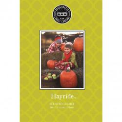 Bridgewater Candle Company - Scented Sachet - Hayride